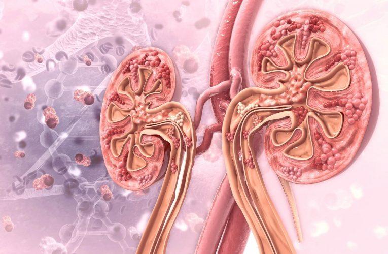腎臟移植後的生活